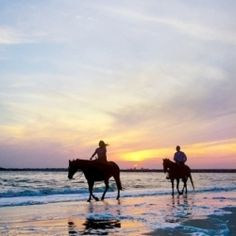 Amelia Island State Park is one of the few places you can ride horses on the beach in Florida.