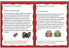 Perlen Karten: Tierwelt (Ampel: Grün - Gelb - Rot)