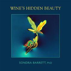 Wine's Hidden Beauty #wine #winetasting #graphics #photo #wineeducation