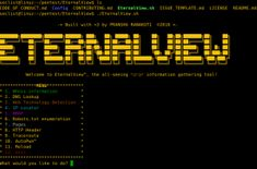 EternalView is an all in one basic information gathering tool. Features: + Whois Information; Prints the whois information of the entered web address + DNS lookup; rints the DNS information and web records