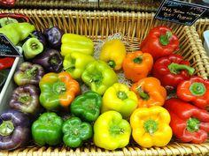 Top Ten Plants for a Beginner Garden: Peppers