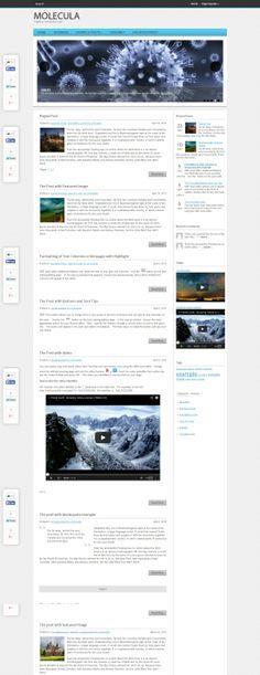 Molecula WordPress Theme Wordpress Theme, Shopping, Image