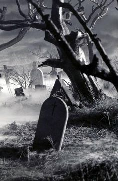 Every day is Halloween. I will not post anything that I find to be genuinely disturbing, gory, or. Creepy Backgrounds, Photo Backgrounds, Old Cemeteries, Graveyards, Scary Art, Spooky Scary, Dark House, Gothic Aesthetic, Photo Background Images