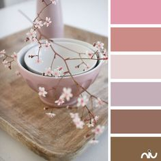 blush and bowl colors