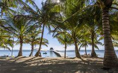 El Secreto Belize, Absolute Belize