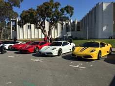 Ferrari row at cars and coffee March San Francisco 2015