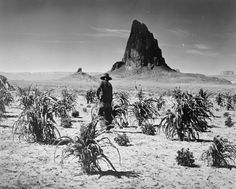 NAVAJO INDIAN ORGANIC FARMING UTAH DESERT