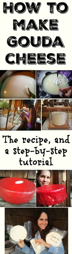 Here is my step-by-step tutorial and recipe for how to make Gouda cheese. I raise goats and have been making cheese for a long time. I also teach a fun online cheesemaking workshop where people learn how to make greek yogurt, chevre, gouda and cabra al vino: http://www.marblemounthomestead.com/online_cheese_making_workshop.html