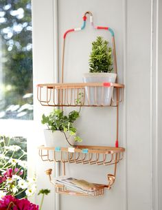 Solution: A shower caddy. Seriously! We love this tip from Pretty & Organized: With a quick coat of spray paint and some colorful string, a caddy becomes a do-it-all kitchen item. Place potted herbs or ripening fruits in it, or the vinegars and oils you reach for all the time. COURTESY OF PRETTY & ORGANIZED BY JANE HUGHES, PUBLISHED BY FIREFLY BOOKS, PHOTOGRAPHED BY SUSSIE BELL. - Redbook.com