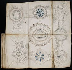 Two of the weirdest ebooks you can download for free: The Voynich Manuscript and Codex Seraphinianus - TeleRead News: E-books, publishing, tech and beyond