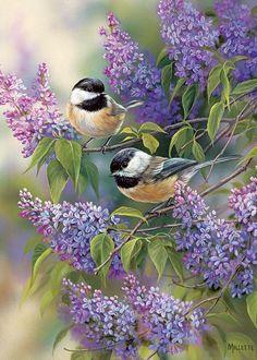Chickadee Duo 35 pc Tray Puzzle Vogel Gif, 5d Diamond Painting, Bird Pictures, Quote Pictures, Little Birds, Wildlife Art, Bird Art, Belle Photo, Beautiful Birds
