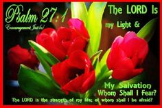 Bible Alive: Ps. 27:1 The Lord is my light and my salvation; whom shall I fear? the Lord is the strength of my