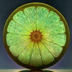 Lemon, oil painting, Dennis Wojtkiewicz
