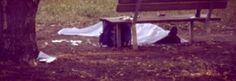 Riverso in posizione supina, in mezzo a una pozza di sangue, nei prati di Corso Regina Margherita a Torino, è stato rinvenuto il cadavere di un 40enne http://tuttacronaca.wordpress.com/2013/09/08/giallo-a-torino-trovato-un-cadavere-vicino-a-regina-margherita-omicidio/