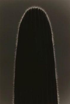 Masao Yamamoto, Kawa=Flow no.1629, 2014.
