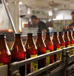 San Diego brewers won 6 gold medals at the 2012 Great American Beer Festival and 6 gold medals at the 2012 World Beer Cup.