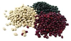 Dry beans are an essential in a food storage plan. They are inexpensive, healthy and have many use. Don't let using dry beans overwhelm you. Emergency Food Storage, Dry Food Storage, Long Term Food Storage, Emergency Preparedness, Storage Ideas, Cranberry Beans, Cassoulet, Vegetable Protein, Good Foods To Eat