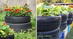 Pneus para usar em jardins pequenos
