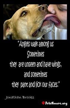 So true! Like dogs! Man's best friend <3