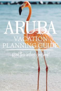 How to plan the perfect trip to Aruba in just a few steps! From the best things to do in Aruba to where to stay and the best time to visit here's the ultimate travel guide to Aruba Travel Vacation List Holiday Tour Trip Destinations Belize, Places To Travel, Travel Destinations, Vacation Places, Italy Vacation, Amazing Destinations, Vacation Spots, Caribbean Vacations, Aruba Caribbean