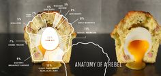 The Paleo Rebel Within Food and Fitness Adventures   I like the idea of an egg in a muffin and I like this diagram a lot.