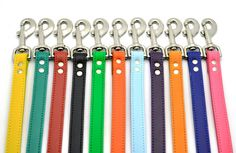 Leather Leash with Personalized NamePlate 20 Colors by LaserPets