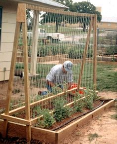 result for raised bed garden design layout Raised Vegetable Gardens, Vegetable Garden Design, Veg Garden, Garden Boxes, Garden Ideas, Vegetable Gardening, Raised Gardens, Garden Paths, Vegtable Garden Layout