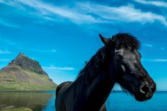 Outrageous new journeys for adventure-lovers: Iceland. Coastalliving.com
