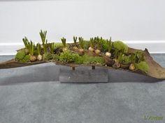 Bloemstukken, Boeketten, Planten, Bloemen Aalst