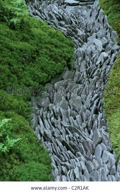 Download this stock image: Chelsea Flower Show 2004: Japanese garden by the Japanese Garden Society. Dry stream of Welsh slate paddle stones surrounded by - C2R1AK from Alamy's library of millions of high resolution stock photos, illustrations and vectors.
