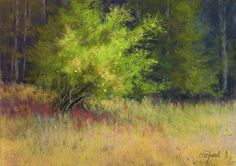 Pastel landscapes by Paula Ford