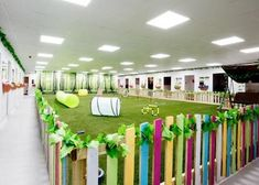 No More Kennels | Luxury Dog Hotel, Spa and Resort Pet Hotel, Hotel Spa, Indoor Dog Park, Luxury Dog Kennels, Dog Playground, Pet Resort, Dog Crates, Grooming Salon, Luxury Rooms