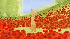 CBeebies Poppies Animation To Teach Children about War - the Bafta nominated short is the perfect way to introduce children to the idea of Remembrance Poppy Images, Bunny Images, Remembrance Day, Animation Film, Poppies, Teaching Kids, Children, Blog, Bunnies