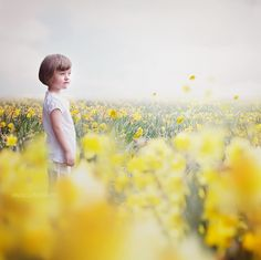 Oh Hello Spring! Daffodils overlays + Free Digital Backdrops! Get this special bundle now!