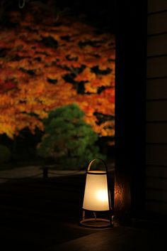 Japan autumn is realy besutiful and a little bit romantic✨