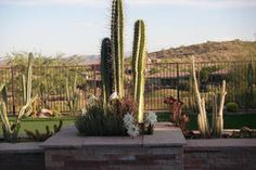 2475 W Lewis and Clark Trl, Phoenix, AZ 85086 - Home For Sale and Real Estate Listing - realtor.com®