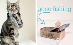 Treat Yo' Cat to Etsy Finds That are Totally Hipster Chic