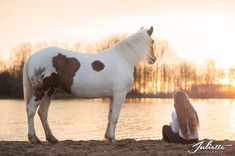 paardenfotografie, horsephoto, photography, www.juliettefotografie.nl Horse Photography, Photography Tips, Cheval Pie, Horse And Human, Horse Pictures, Paths, Pinto Horses, Goals, Animals
