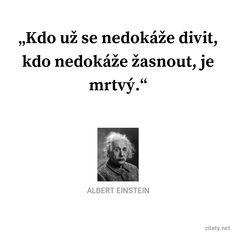 Einstein, Wisdom, Entertainment, Motivation, Words, Cats, Quotes, Author, Quotations
