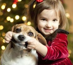 A Party Poopers Guide to Christmas: How to Avoid Toxic Trees and Other Holiday Horrors for Pets