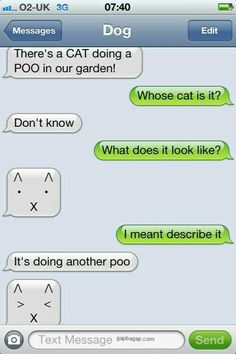 #Hilarious Text About Cat vs. Garden #LOL