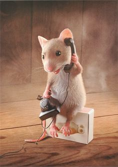 Ava Mouse always on her phone Ava Mouse always on her phone - Animals wild, Animals cutest, Animals funny, Animals drawings Needle Felted Animals, Felt Animals, Cute Baby Animals, Animals And Pets, Funny Animals, Art Quotes Funny, Funny Art, Quote Art, Mouse Crafts