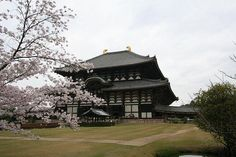 Tōdai-ji is a Buddhist temple complex located in the city of Nara, Japan.#japan #nara