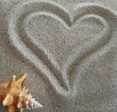 Beach Theme Wedding Invitations | Beach Weddings | Wedding Invitation Collections