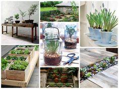 Reaproveitar vidros de compotas, louças sem uso e espacinhos nas escadas são ótimas dicas para deixar seu jardim ou quintal mais cheio de vida.
