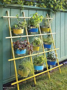 Great idea for creating herbal garden!!