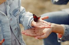 Little girl holding a butterfly Free Pho. Le Trouble, Best Relationship Advice, Cool Yoga Poses, Yoga For Weight Loss, Mom Advice, Talking To You, My Mom, Free Photos, Little Girls