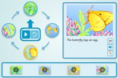 Butterfly Lifecycle - Cyclical Sequencer (Simple) activity