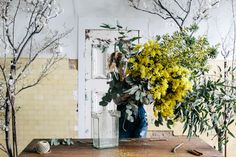 Katie Marx Makes a Bouquet — Camellia Fiber Company