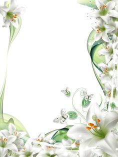 Transparent PNG Photo Frame with White Lilies Flowers Free Frames, Borders And Frames, Page Borders Design, Border Design, Flower Frame, Flower Art, Picture Borders, White Lily Flower, Art Carte
